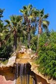 Waterfall in Jungle park at Tenerife Canary - nature travel background