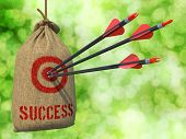 Success  - Arrows Hit in Red Mark Target.