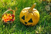 Halloween pumpkin and basket with candies on green grass background, outdoors