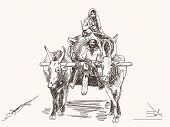Asian farmer family riding ox cart sketch Hand drawn illustration