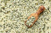 Shelled Hemp Seeds In Wooden Scoops, One Of The Superfoods