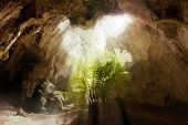 picture of cave  - Inside a limestone cave at Naracoorte Caves National Park in South Australia - JPG