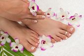 image of pedicure  - Spa treatment with beautiful exotic orchids - JPG