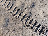 pic of motocross  - Motocross bike trace in a muddy surface - JPG