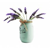 picture of bundle  - bundle of lavender flowers in retro vase isolated on white background - JPG