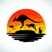 image of kangaroo  - Animal of Wildlife Kangaroo low poly abstract vector - JPG