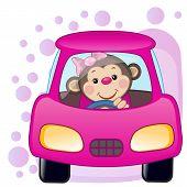 pic of car ride  - Cute Monkey girl is sitting in a car - JPG