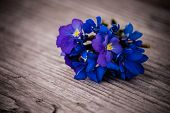 stock photo of viola  - Bouquet of violet flowers Viola Odorata on wooden background copy space - JPG