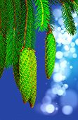 picture of pine cone  - Pine cone and branches against soft defocused background - JPG