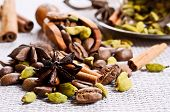 image of cardamom  - Coffee beans star anise cardamom and cinnamon on burlap  - JPG