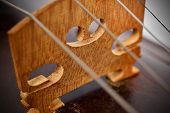 picture of violin  - Close up view on violin strings and violin body - JPG