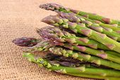 image of immune  - Bunch of fresh green asparagus harvest on burlap bag concept of healthy food nutrition and strengthening immunity - JPG