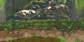 stock photo of dinosaur  - Deltadromeus dinosaurs pass by two large Albertaceratops dinosaurs having a disagreement - JPG