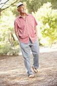 image of stroll  - Senior Man Walking In Countryside - JPG