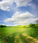 mooie zomerse landschap