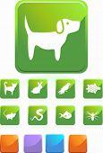 Pet Icon Set Green