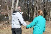 Senior Man Showing Senior Woman The Beauty Of Nature
