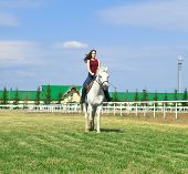 image of white horse  - The young girl embraces a white horse against summer landscape - JPG