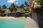 Beach path with tropical flowers and palms with resort in background in Grand Baie on Mauritius Isla