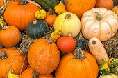 Display of fall gourds and pumpkins on bales of straw or hay. poster