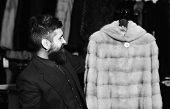 Winter Clothing Concept. Macho With Stylish Appearance With Mink Fur In Fashion Store. Man With Bear poster