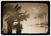 sepia-toned vintage tropical postcard