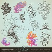 picture of scroll design  - vector set - JPG