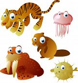 vector animals: tiger, walrus, jelly fish, beaver, fish