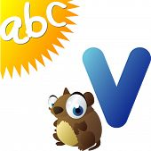 ABC animals: V is for Vole