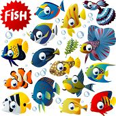 vector tropical fish set