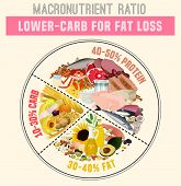 Low Carbohydrate Diet Diagram. Macronutrient Ratio Poster. Fat Loss Concept. Colourful Vector Illust poster
