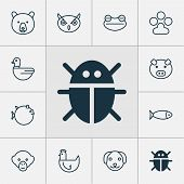 Zoology Icons Set With Globefish, Chicken, Bug And Other Night Fowl Elements. Isolated Vector Illust poster