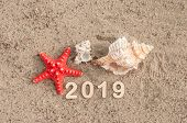 Starfish, symbol of 2019 on sea coast on the sand. New Years and Christmas vacations at beach concep poster