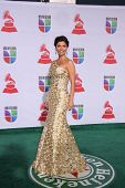 LOS ANGELES - NOV 10:  Chiquinquira Delgado arrives at the 12th Annual Latin GRAMMY Awards at Mandal