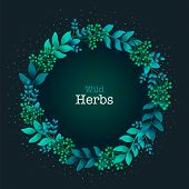 Herbal Pre-made Composition. Round Wreath With Leaves And Branches. Summer Wild Herbs With Space For poster