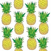 Vector Hand Drawn Abstract Tropical Seamless Pattern Of Exotic Fruit Pineapple. Ananas Illustration. poster