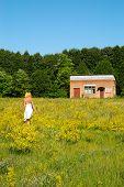 Meadow#1