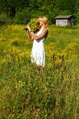 Meadow#3