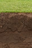 picture of mudslide  - cross section of a grass lawn with exposed soil below - JPG