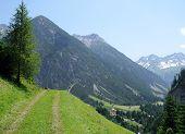 alpine trekking path