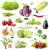 Collection of vegetables