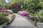 stock photo of duck pond  - Foot Bridge across Waterfall Pond at Crystal Springs Rhododendron Garden in Spring Season - JPG