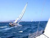 Regatta In Canarias