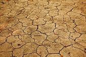 Dry soil texture closeup