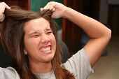 stock photo of frazzled  - college student pulling out her hair - JPG