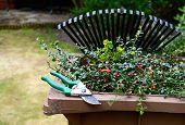 Garden Waste Recycling