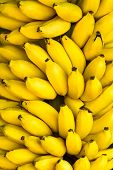stock photo of bunch bananas  - Bunch of ripe bananas background - JPG