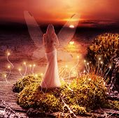 stock photo of fairies  - Fantasy magic world - JPG