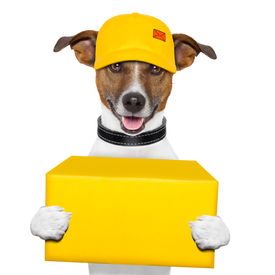 stock photo of jack-in-the-box  - dog delivery yellow post box with cap - JPG
