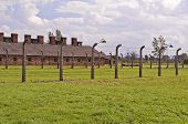 stock photo of auschwitz  - Prisoners barracks at the Auschwitz Birkenau concentration camp in Poland - JPG